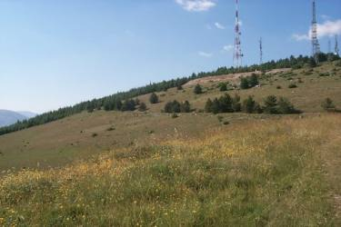 Vista di Monteluco